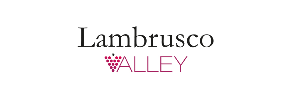 Consorzio logo valley3